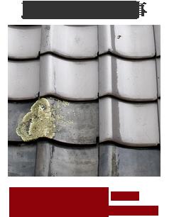 外壁塗装 瓦修理メニューはこちら 堀川産業ミヤプロ支社 宇都宮